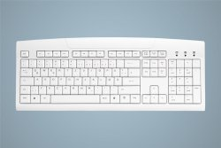 Active Key AK-8000-UV-W/GE keyboard USB QWERTZ German White ( AK-8000-UV-W/GE )