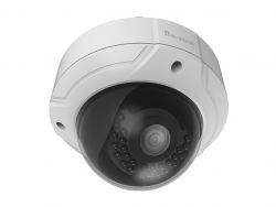 LevelOne FCS-3085 IP security camera Innen & Ausen Kuppel Weis Sicherheitskamera ( FCS-3085 )